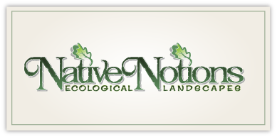 Native Notions – Landscape Design & Installation Logo